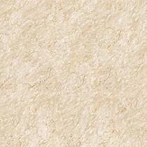 Gạch TOROMA 50x50 T5108