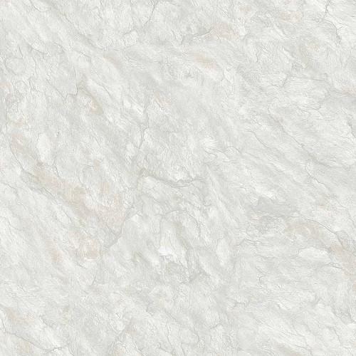 Gạch TOROMA 50x50 T5107