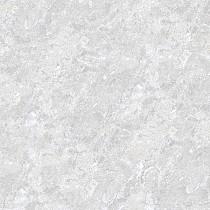 Gạch TOROMA 50x50 T5112