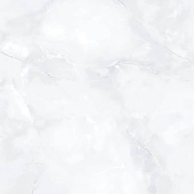 Gạch TASA 60x60 TS 6011