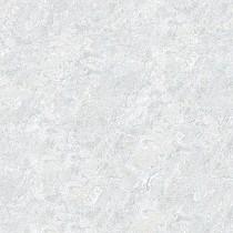 Gạch Toroma kỹ thuật số  T6102