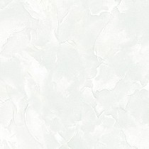 Gạch Tasa 50x50 TS-5014