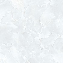 Gạch Tasa 50x50 TS-5015