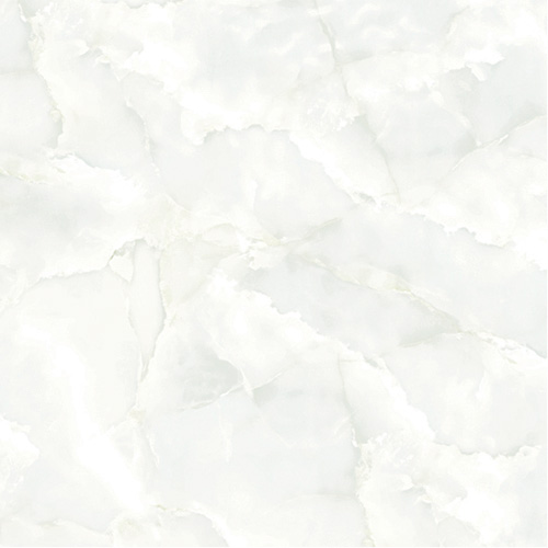 Gạch Tasa 50x50 TS-5019