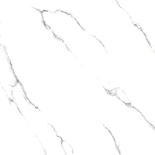 Gạch Tasa 50x50 TS-5012