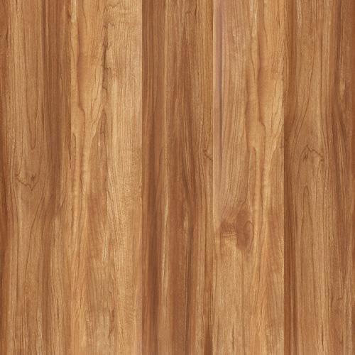Gạch Tasa vân gỗ 50x50 TS-5102