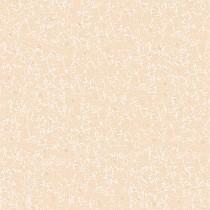 Gạch Titami 50x50 CTM 5606