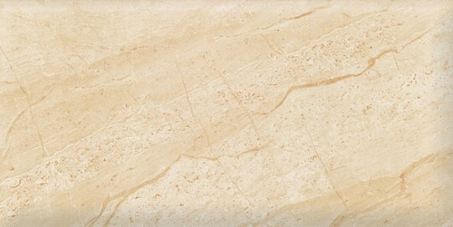 Gạch Viglacera 30x60 KT3607