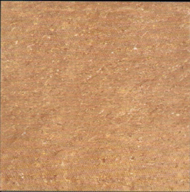 Gạch Viglacera TS1-610