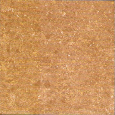Gạch Viglacera TS2-610