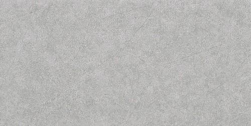 Gạch men mờ hoàng gia 30x60 R366002