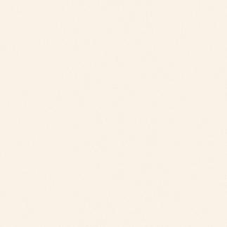 Gạch viglacera 80x80 BN800