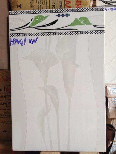 Gạch ốp tường 30×45 giá rẻ HA634