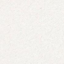 Granite gạch 60×60 xà cừ trắng HA369