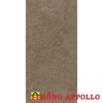 Gạch Royal 30×60 36846
