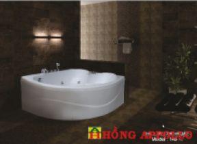 Bồn tắm Việt Mỹ 14D