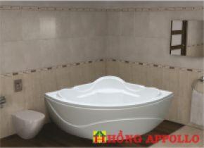 Bồn tắm Việt Mỹ 123