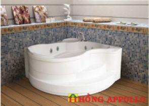 Bồn tắm Việt Mỹ 1313