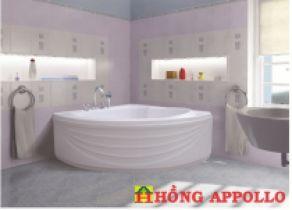 Bồn tắm Việt Mỹ 13CL