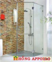 Vách tắm kính Đình Quốc DQ-8177
